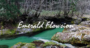 Emerald Flowsion